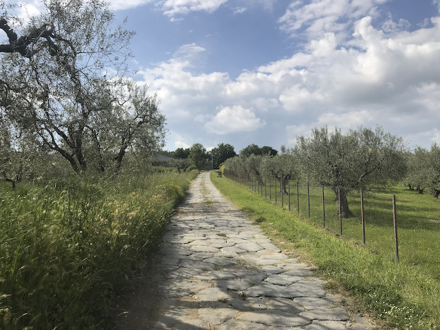 Via Cassia near Montefiascone